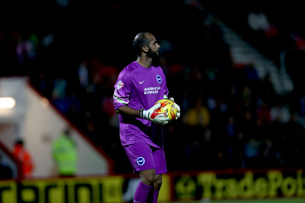 Ali Al-Habsi during the SkyBet Championship match between Bournemouth and Brighton and Hove Albion at the Goldsands Stadium, 1st November 2014
