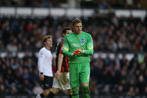 David Stockdale during the Sky Bet Championship match between Derby County and Brighton and Hove Albion at the iPro Stadium, Derby, England on 6th December 2014