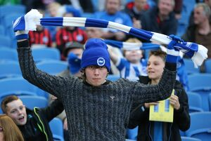 Brighton and Hove Albion v AFC Bournemouth