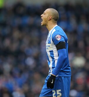 Brighton and Hove Albion v Bolton Wanderers Sky Bet Championship 13/02/2016