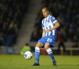Brighton and Hove Albion v Bristol City Sky Bet Championship 20/10/2015