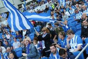 Brighton and Hove Albion v Cardiff City Sky Bet Championship 03/10/2015