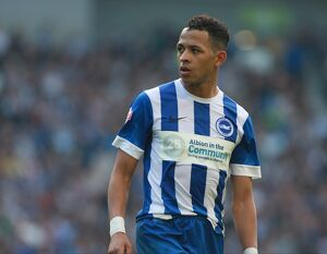 past seasons/season 2015 16 matches cardiff city 03oct15/brighton hove albion v cardiff city sky bet championship