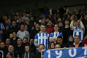 Brighton and Hove Albion v Fulham