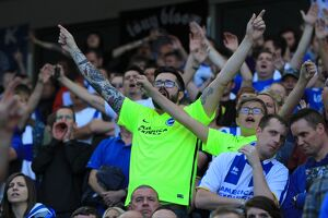 Brighton and Hove Albion v Hull City Sky Bet Championship 07/08/2015