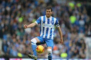 Brighton and Hove Albion v Middlesbrough Sky Bet Championship 19/12/2015