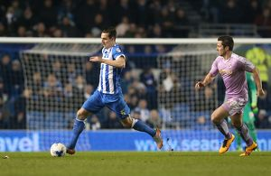 Brighton and Hove Albion v Reading Sky Bet Championship 15/03/2016