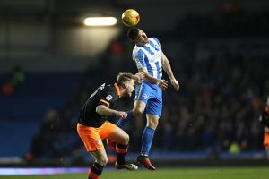 Brighton and Hove Albion v Sheffield Wednesday EFL Sky Bet Championship 16JAN17