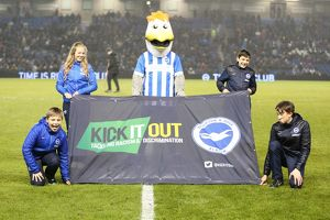 Brighton and Hove Albion v Sheffield Wednesday Sky Bet Championship 08/03/2016