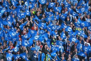 Brighton and Hove Albion v Sheffield Wednesday Sky Bet Championship, Play Off, Second