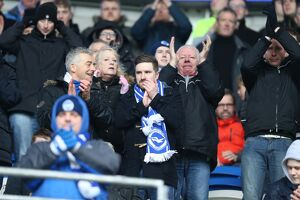 Cardiff City v Brighton and Hove Albion Sky Bet Championship 20/02/2016
