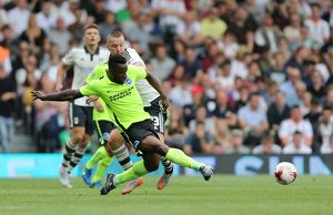 Fulham v Brighton and Hove Albion Sky Bet Championship 15/08/2015