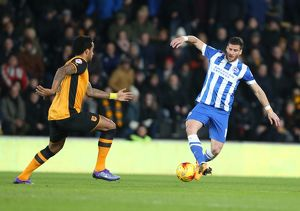 Hull City v Brighton and Hove Albion Sky Bet Championship 16/02/2016