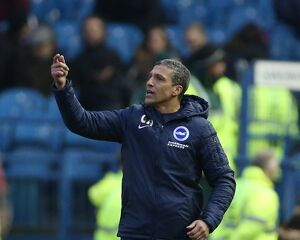 Sheffield Wednesday v Brighton and Hove Albion