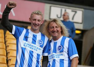 Wolverhampton Wanderers v Brighton and Hove Albion Sky Bet Championship 17/09/2015